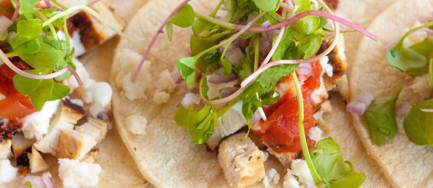 Need Gluten Free Tacos? Taco Caterers Have You Covered